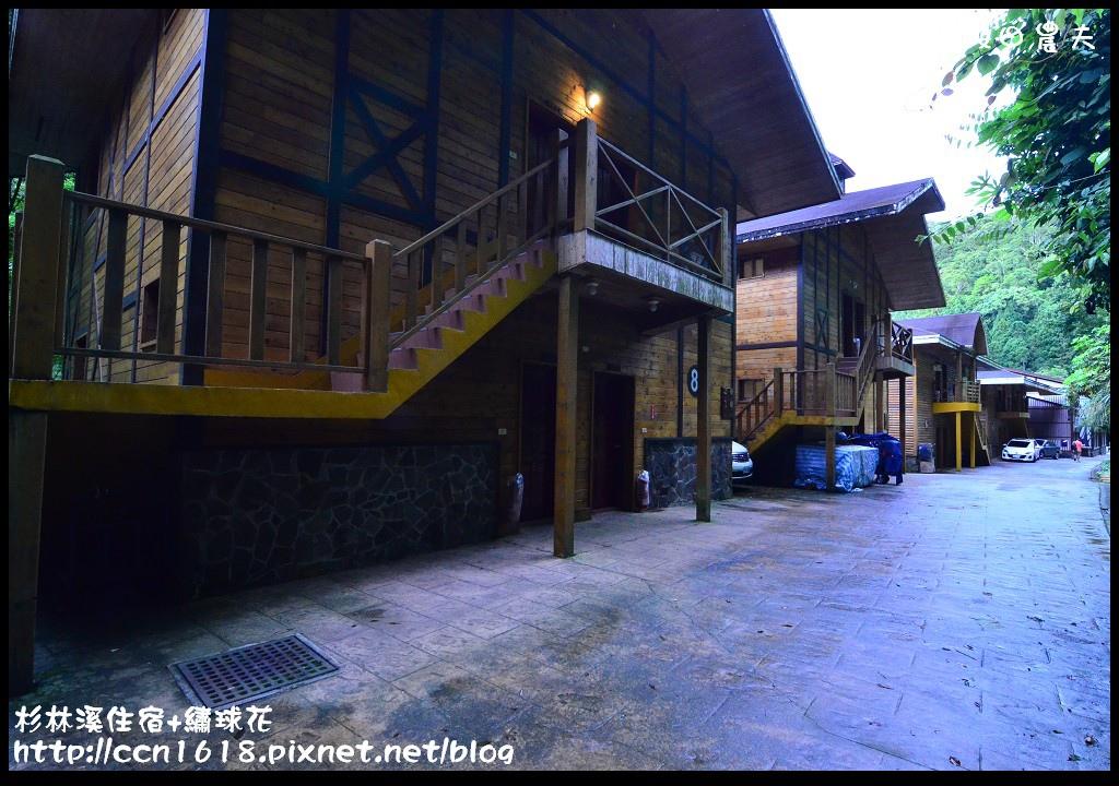 杉林溪住宿+繡球花DSC_9894