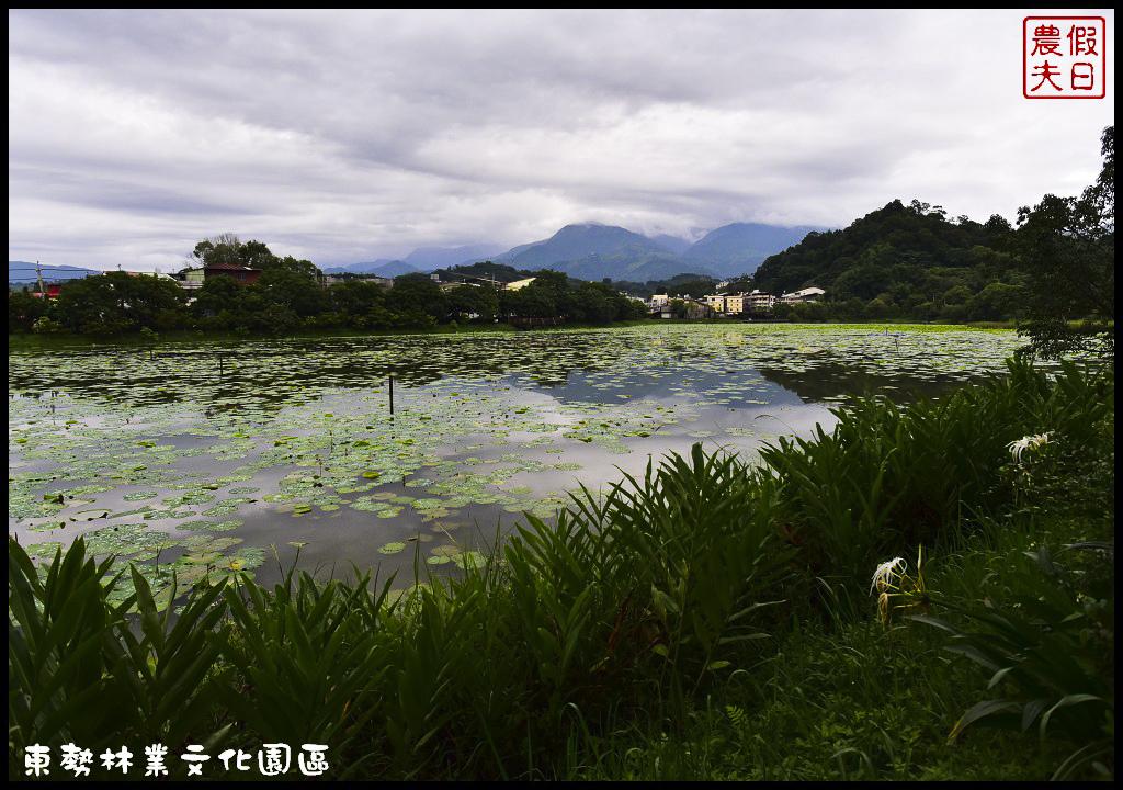 東勢林業文化園區DSC_1426.jpg