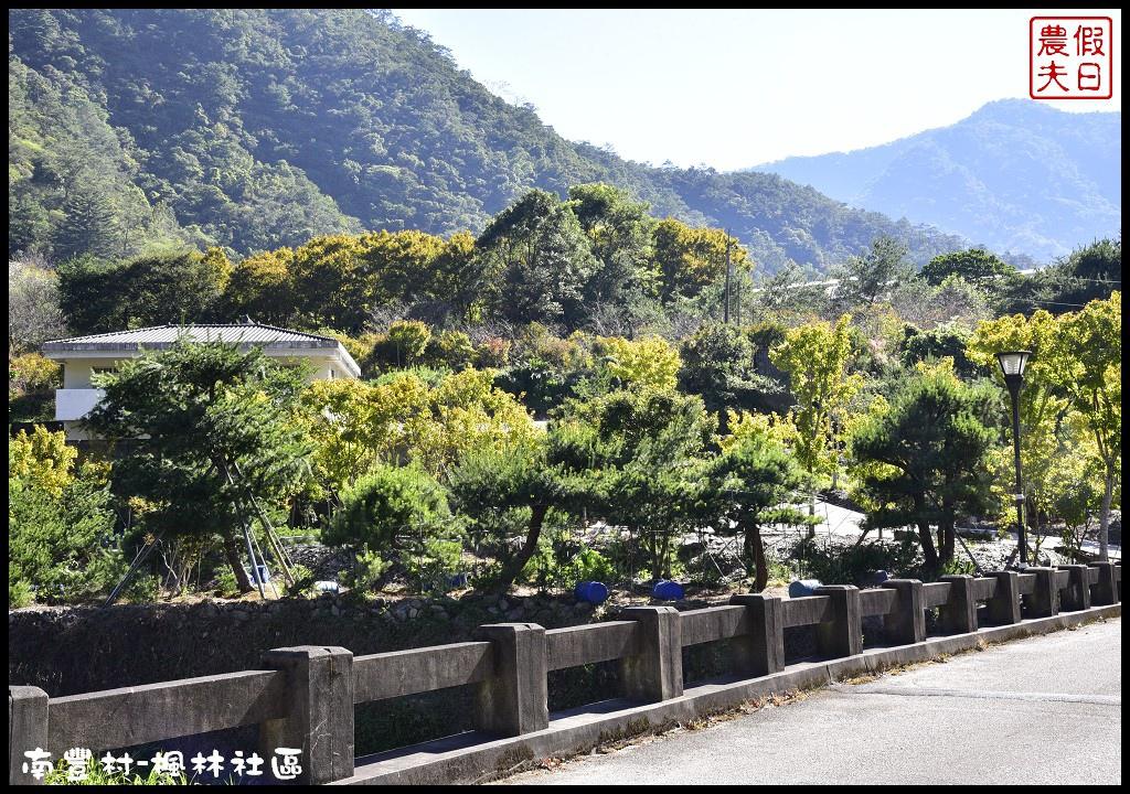 南豐村-楓林社區_DSC2781.jpg
