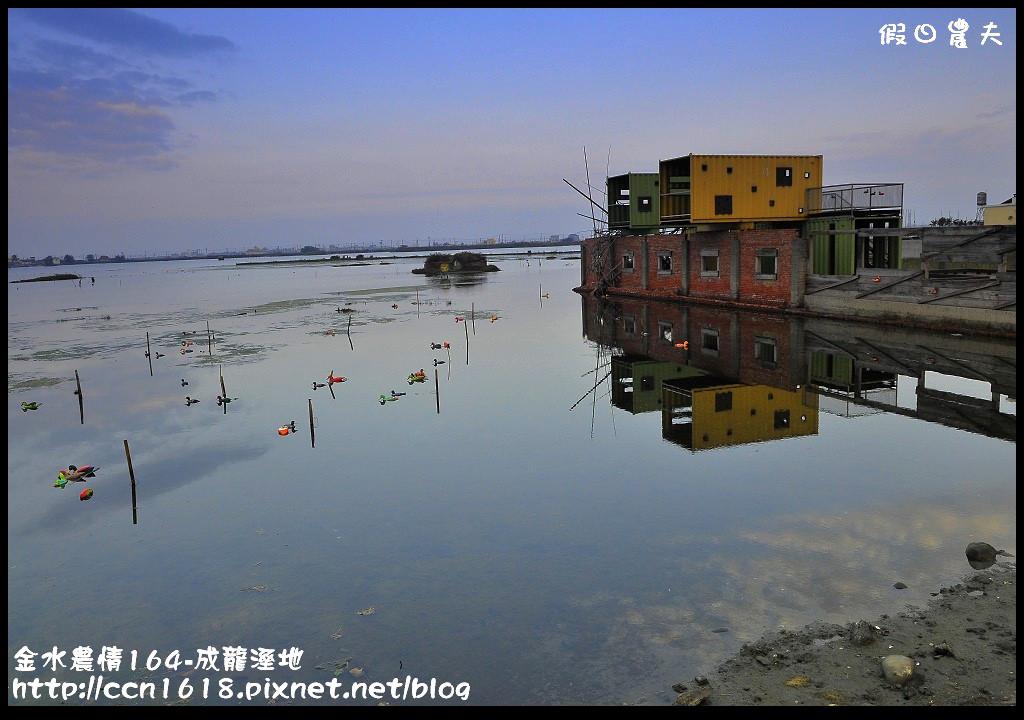 金水農情164-成龍溼地_DSC8215