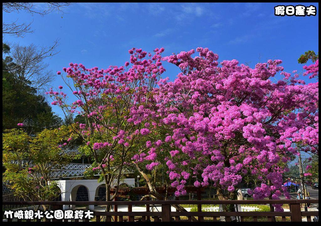 竹崎親水公園風鈴木DSC_0048