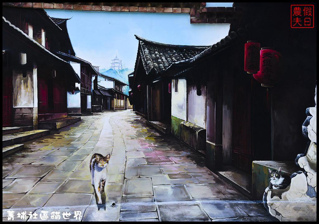 菁埔社區貓世界DSC_3687