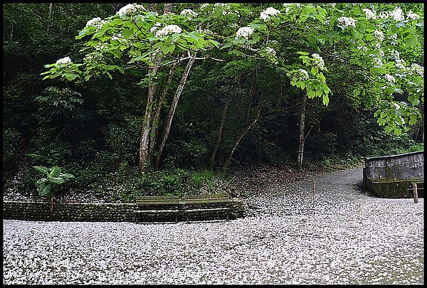 2013挑水古道_DSC0606