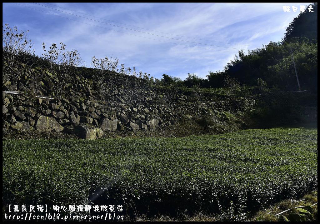 【嘉義民宿】明心園禪靜渡假茶莊_DSC3567