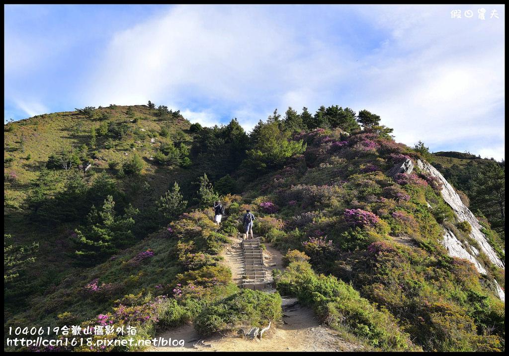 1040619合歡山攝影外拍DSC_1242