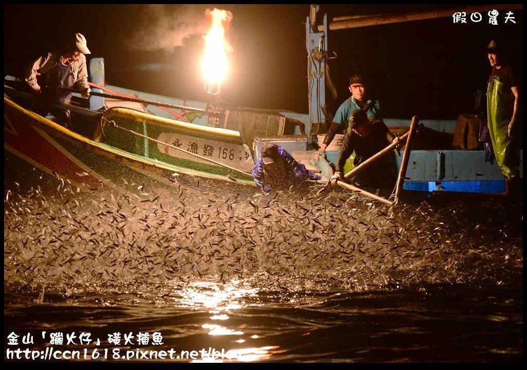 金山「蹦火仔」磺火捕魚DSC_0283