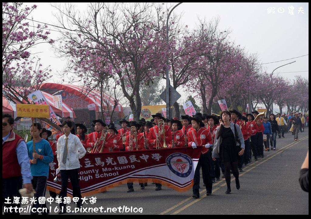 土庫馬光國中羊蹄甲大道DSC_1031