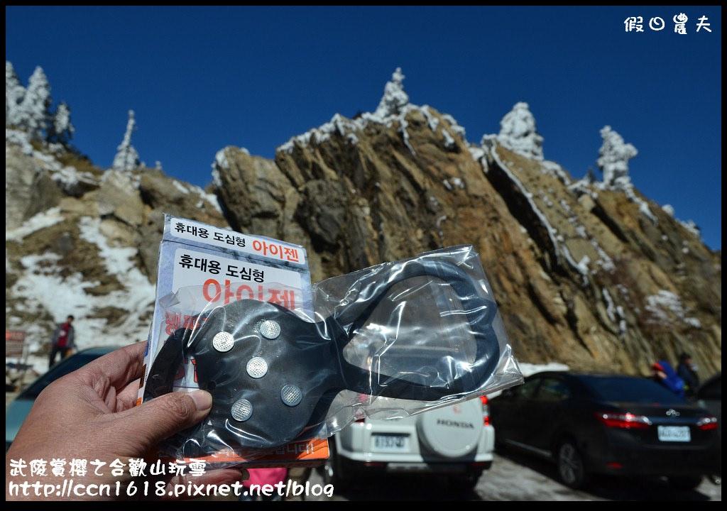 武陵賞櫻之合歡山玩雪DSC_5191