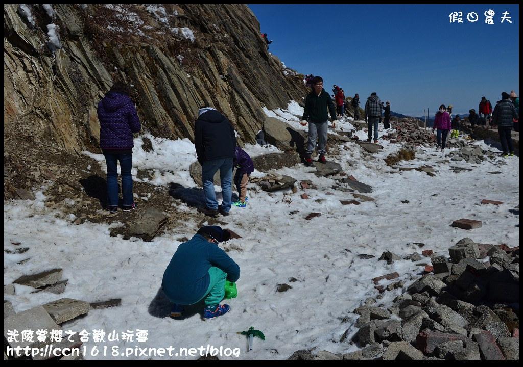 武陵賞櫻之合歡山玩雪DSC_5200