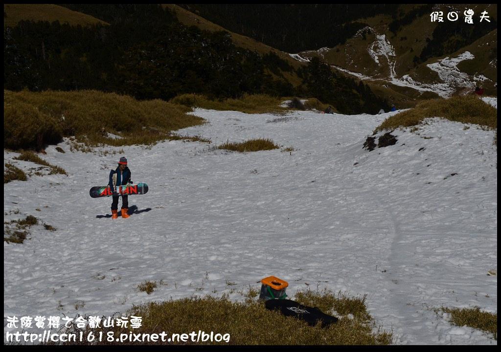 武陵賞櫻之合歡山玩雪DSC_5265
