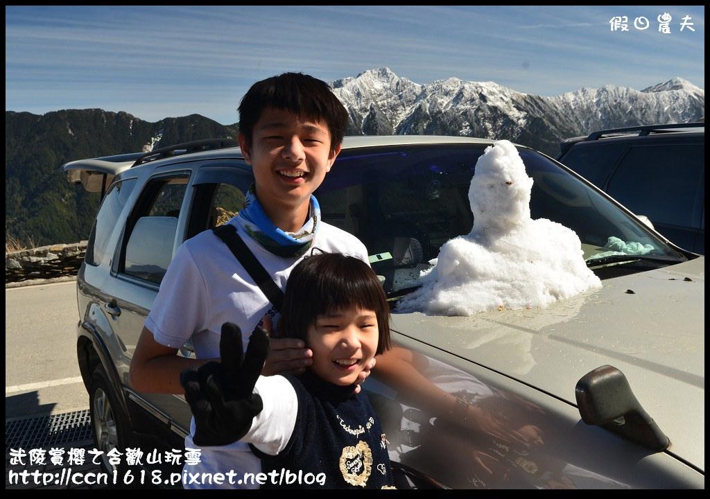 武陵賞櫻之合歡山玩雪DSC_5313