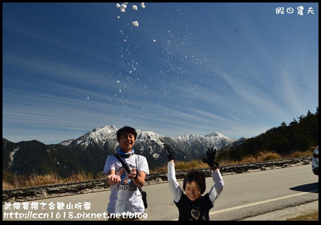 武陵賞櫻之合歡山玩雪DSC_5316