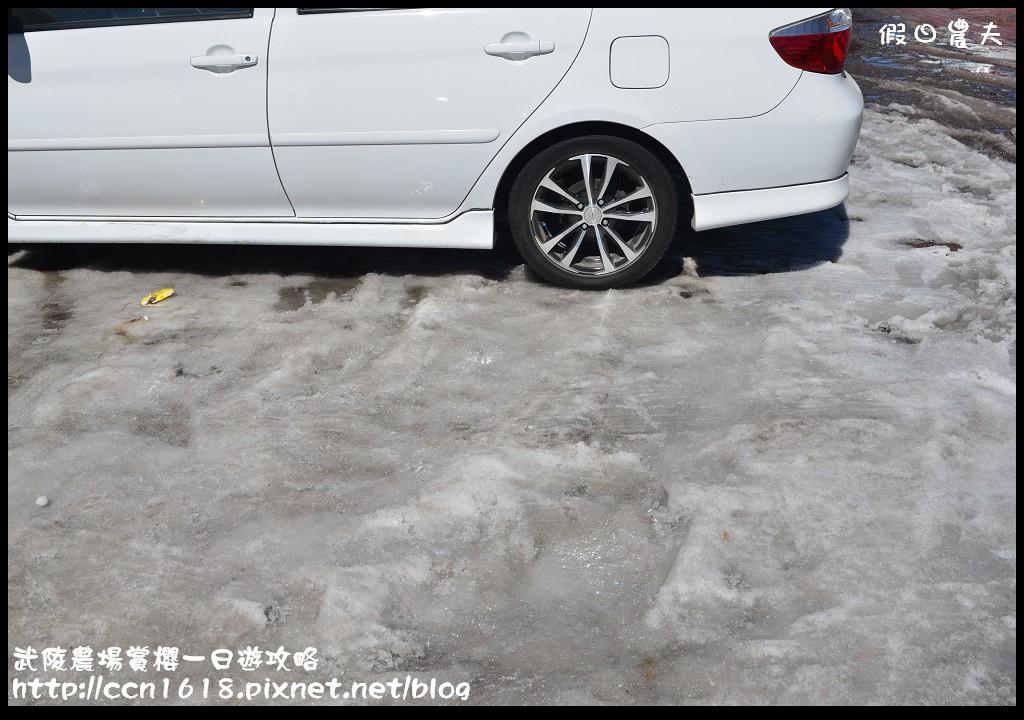 武陵農場賞櫻一日遊攻略DSC_5234
