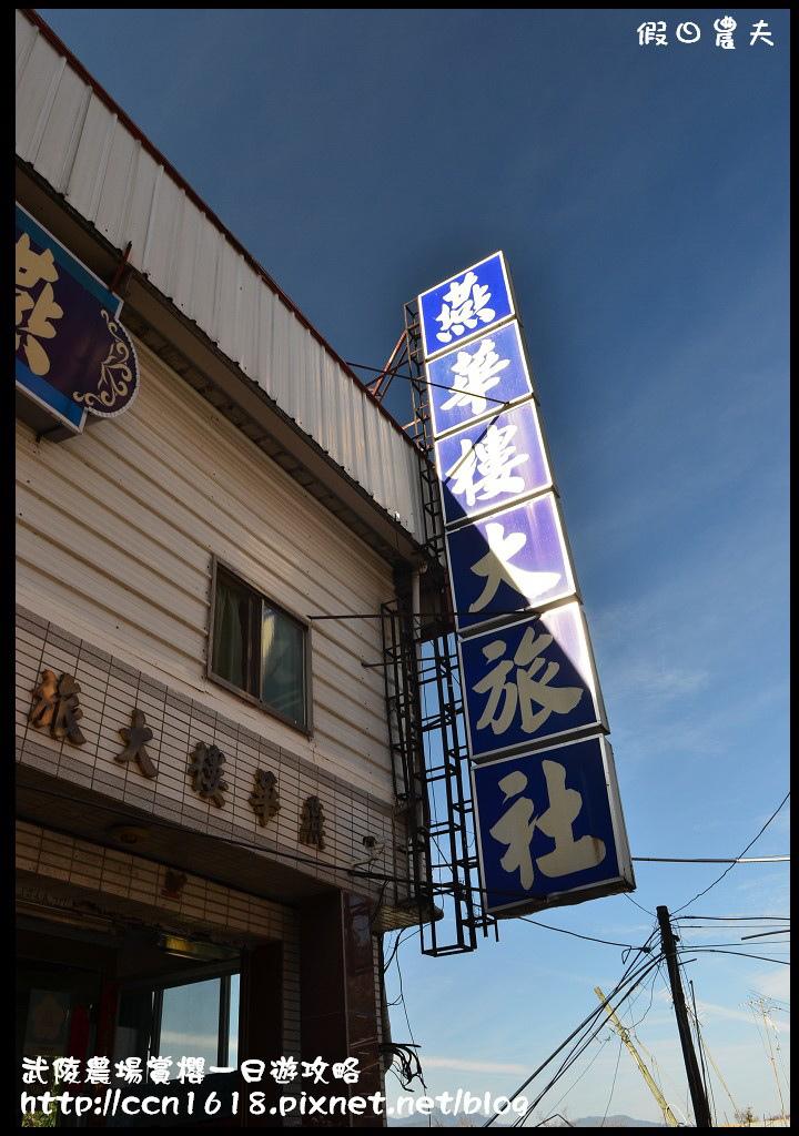 武陵農場賞櫻一日遊攻略DSC_5337