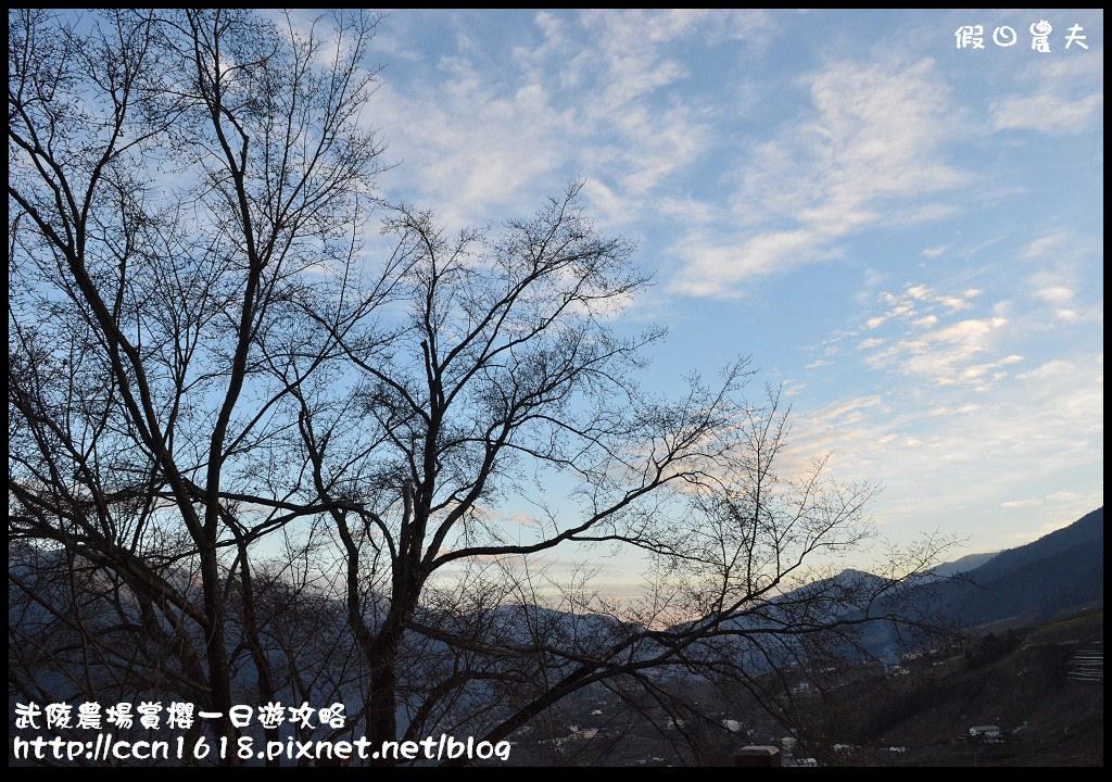 武陵農場賞櫻一日遊攻略DSC_5427