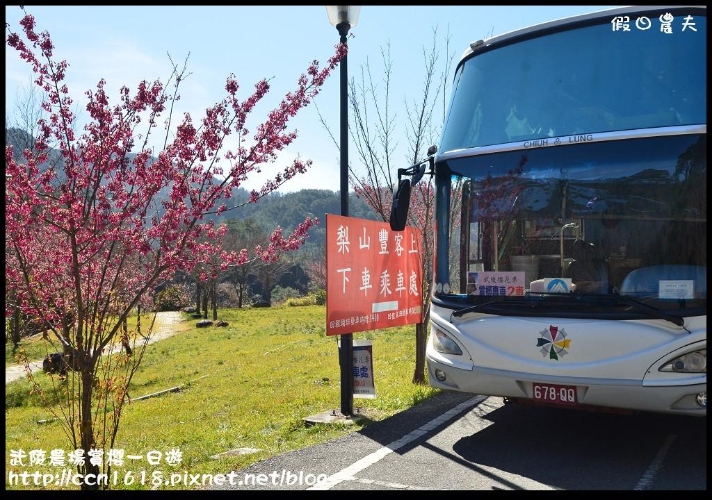 武陵農場賞櫻一日遊DSC_5782