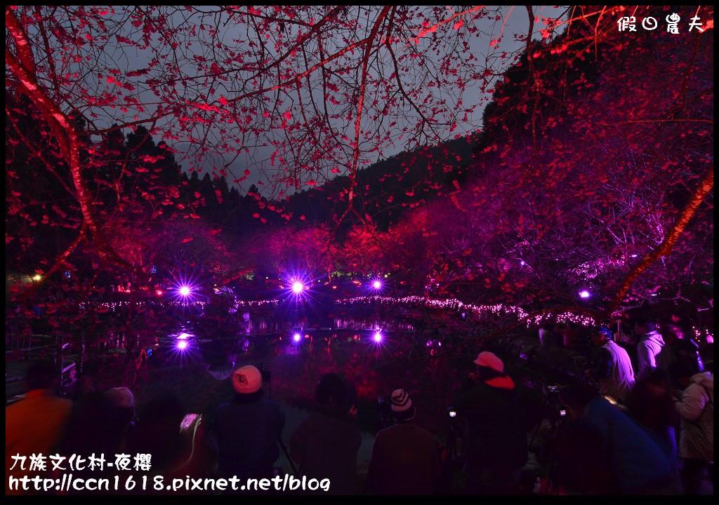 九族文化村-夜櫻DSC_4829