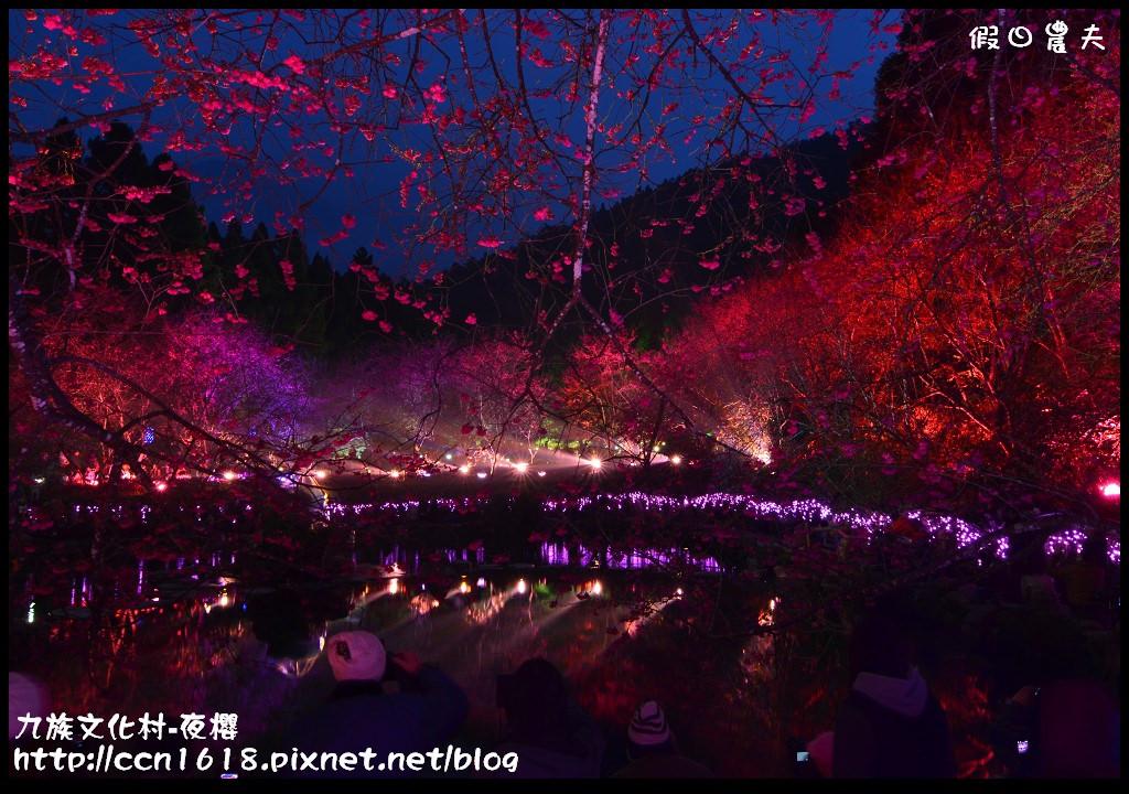 九族文化村-夜櫻DSC_4865