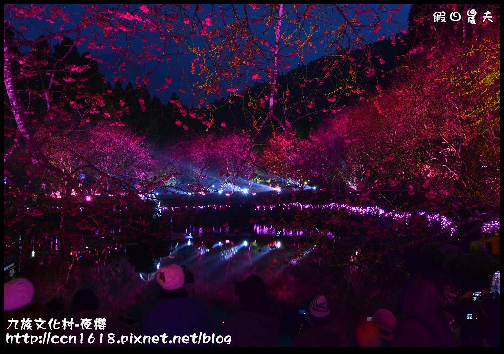 九族文化村-夜櫻DSC_4868
