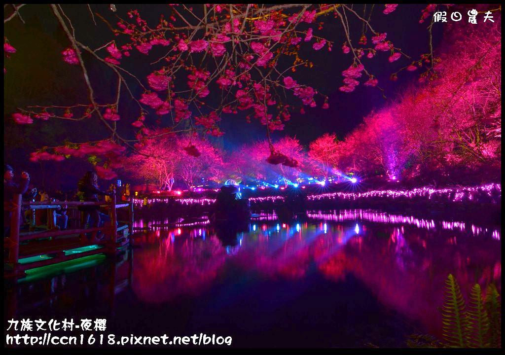 九族文化村-夜櫻DSC_4976