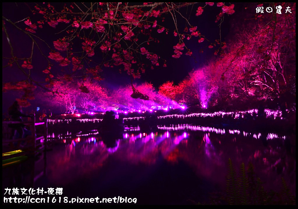 九族文化村-夜櫻DSC_4980