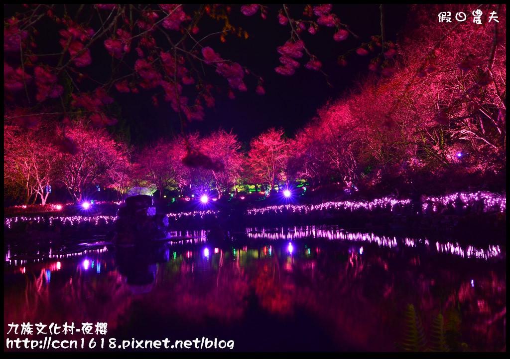 九族文化村-夜櫻DSC_5039