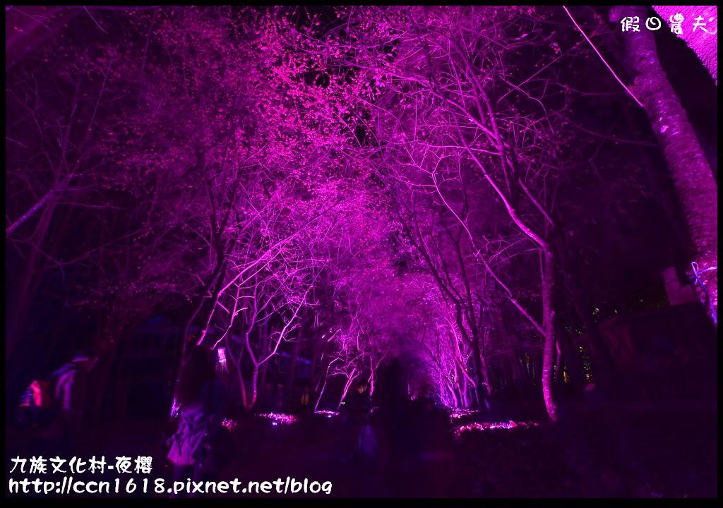 九族文化村-夜櫻DSC_5063