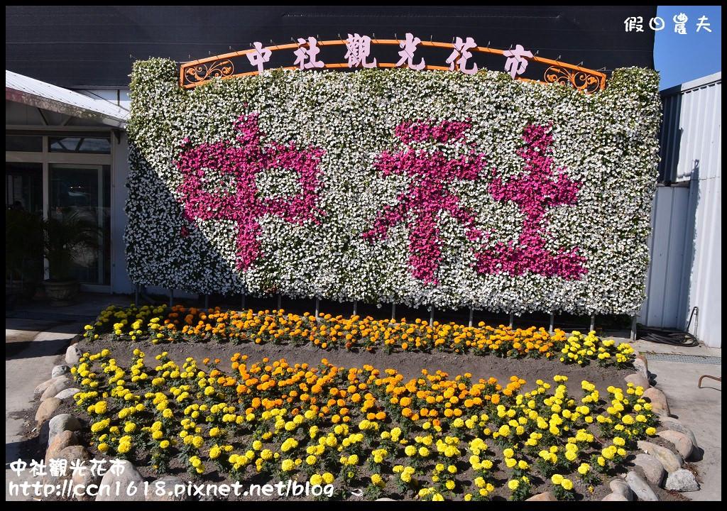 中社觀光花市DSC_1659