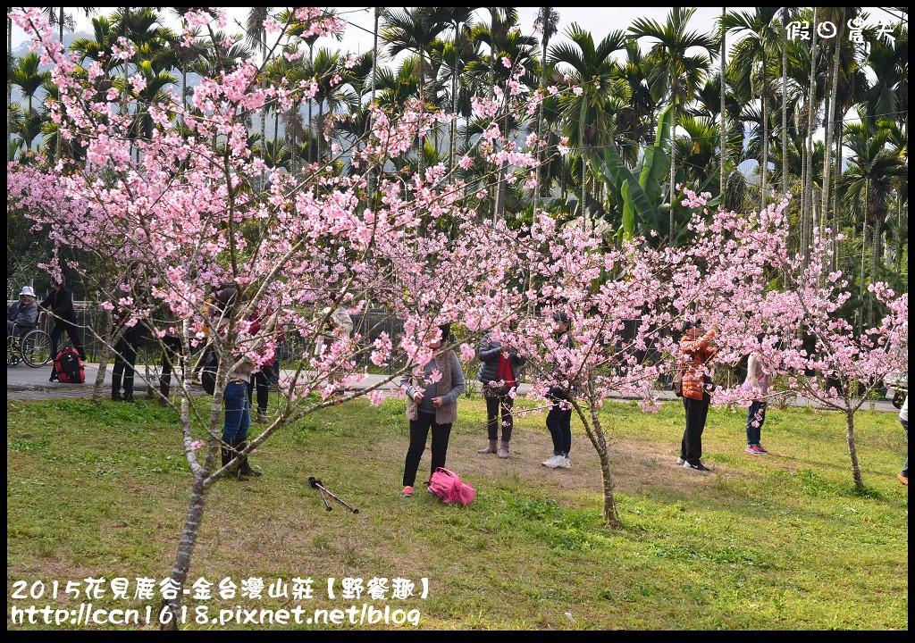 2015花見鹿谷-金台灣山莊【野餐趣】DSC_2244