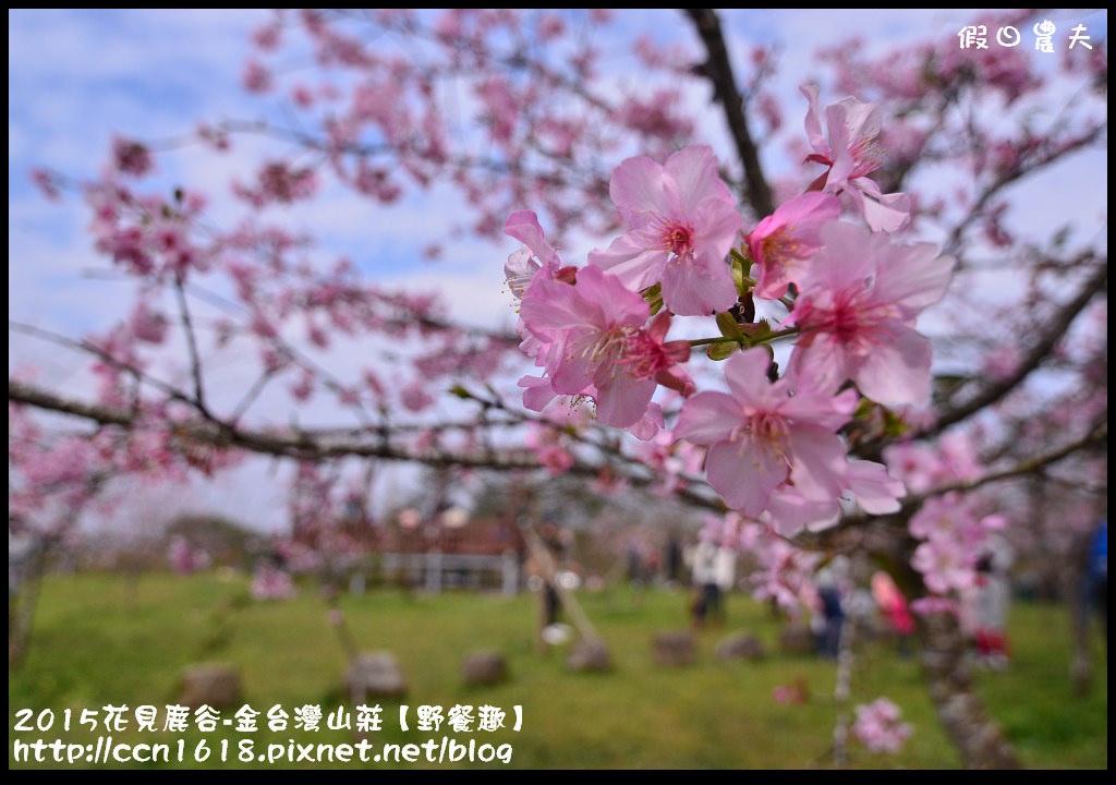 2015花見鹿谷-金台灣山莊【野餐趣】DSC_2254