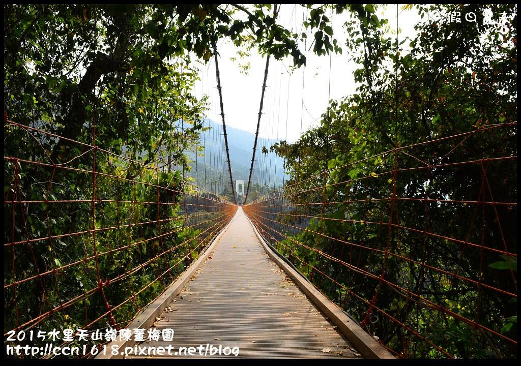 2015水里天山嶺陳董梅園DSC_9672
