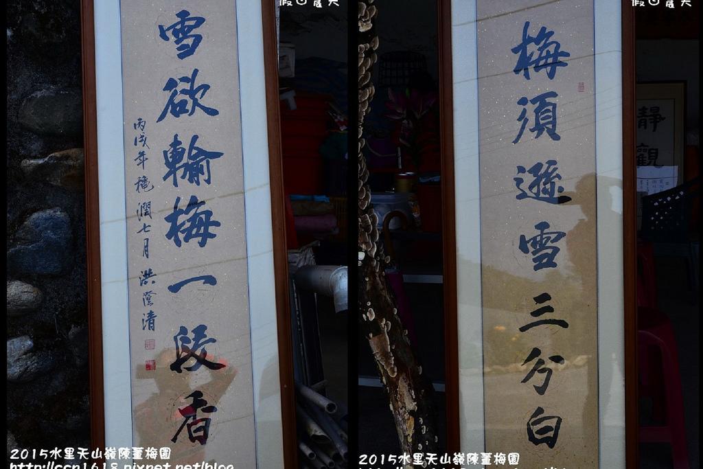 2015水里天山嶺陳董梅園0001