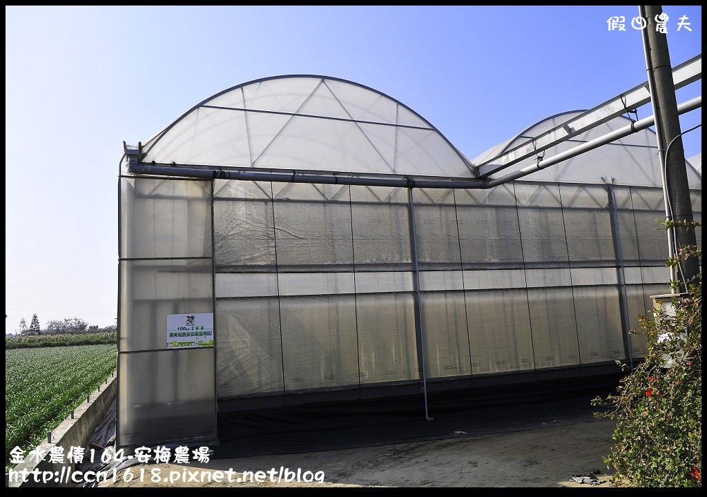 金水農情164-安梅農場_DSC8362