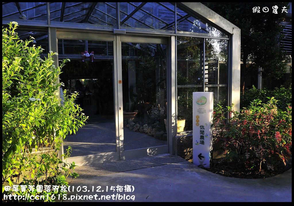 田尾菁芳園落羽松_DSC9042