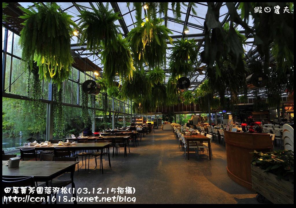 田尾菁芳園落羽松_DSC9148