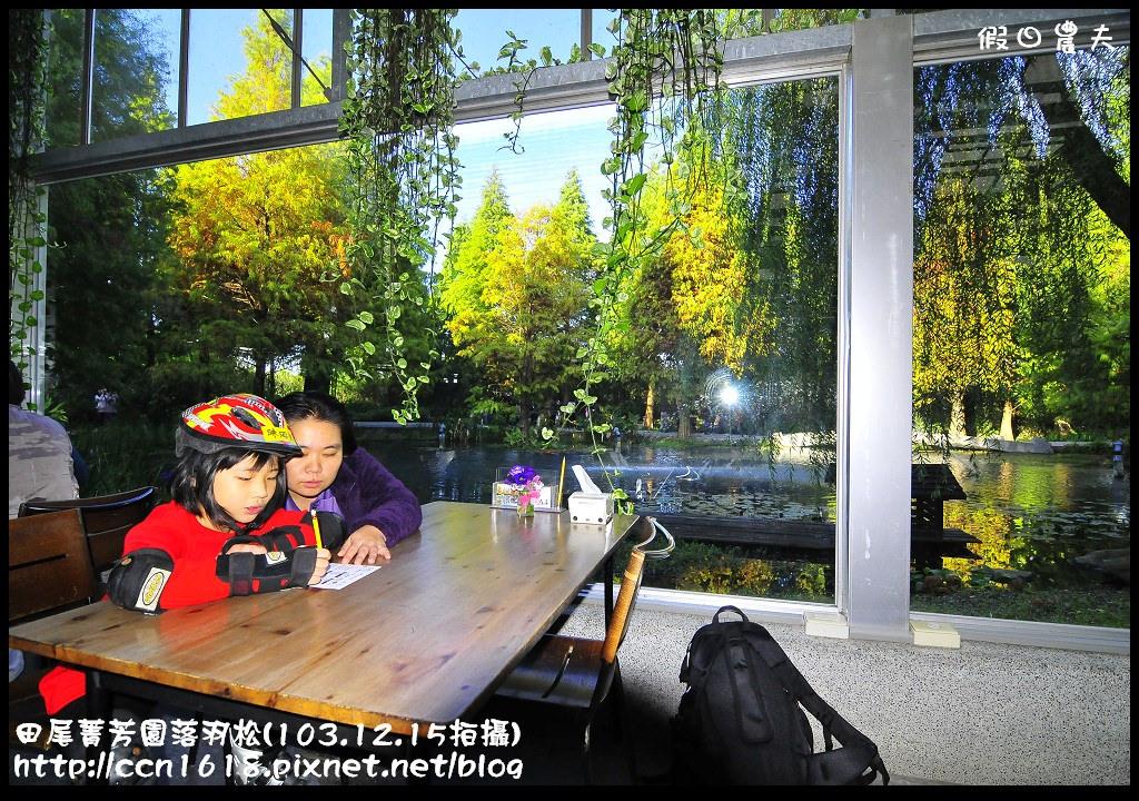 田尾菁芳園落羽松_DSC8957