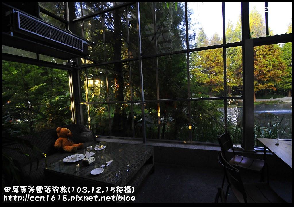 田尾菁芳園落羽松_DSC9101