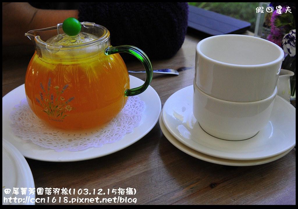 田尾菁芳園落羽松_DSC9008