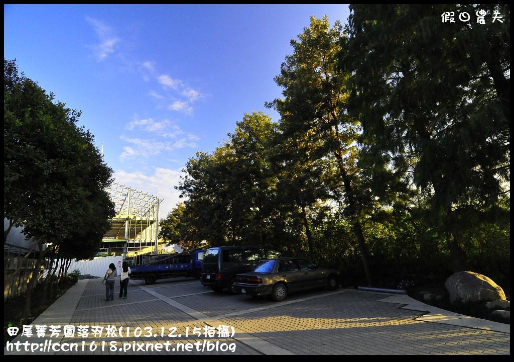 田尾菁芳園落羽松_DSC9070