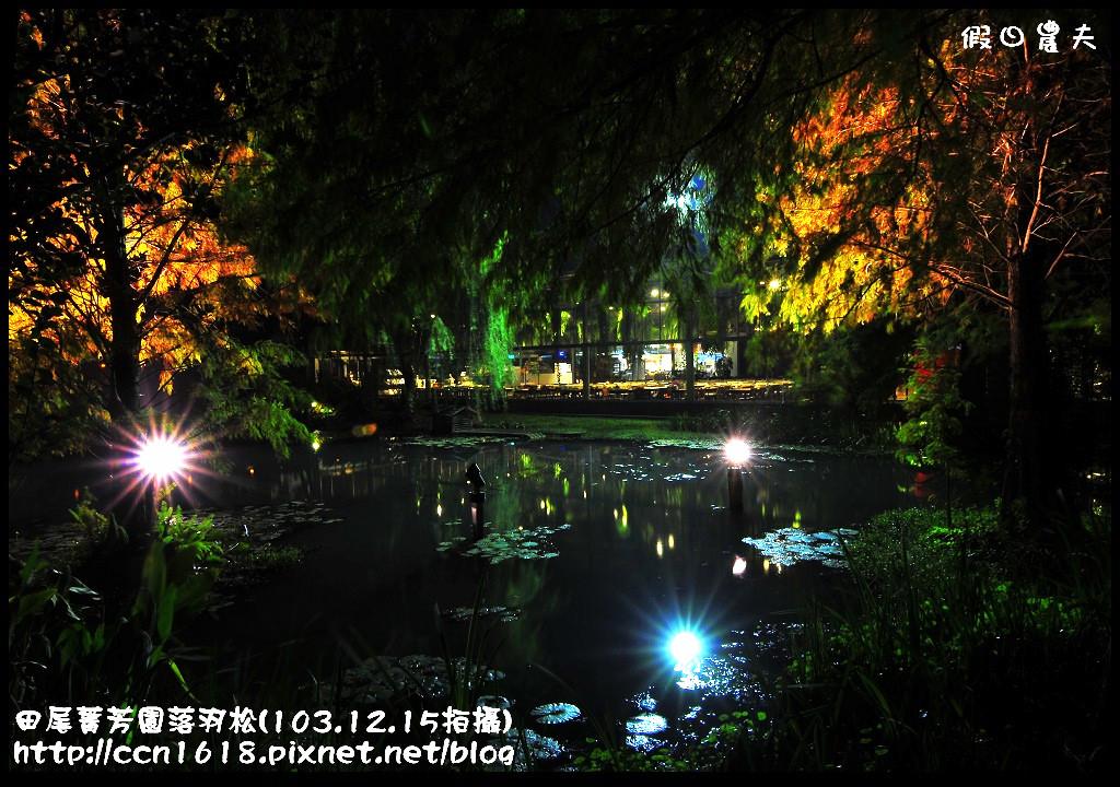 田尾菁芳園落羽松_DSC9221