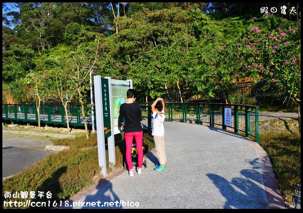 向山觀景平台DSC_7227