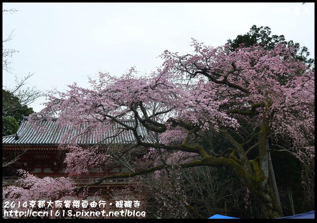 2014京都大阪賞櫻自由行.醍醐寺DSC_9995