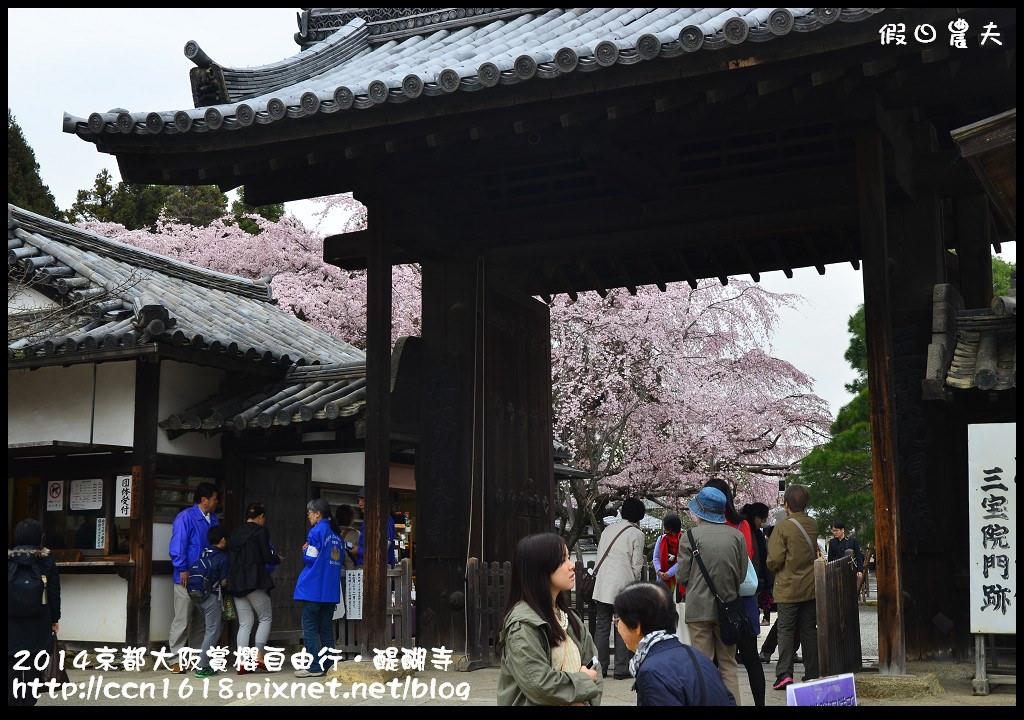 2014京都大阪賞櫻自由行.醍醐寺DSC_9990