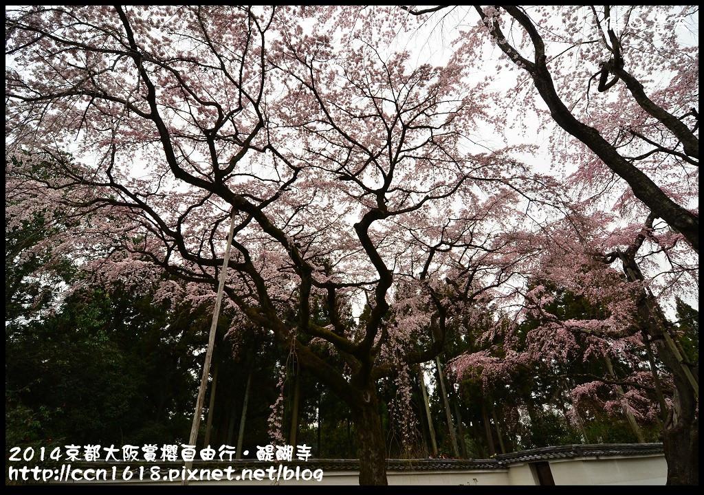 2014京都大阪賞櫻自由行.醍醐寺DSC_0008