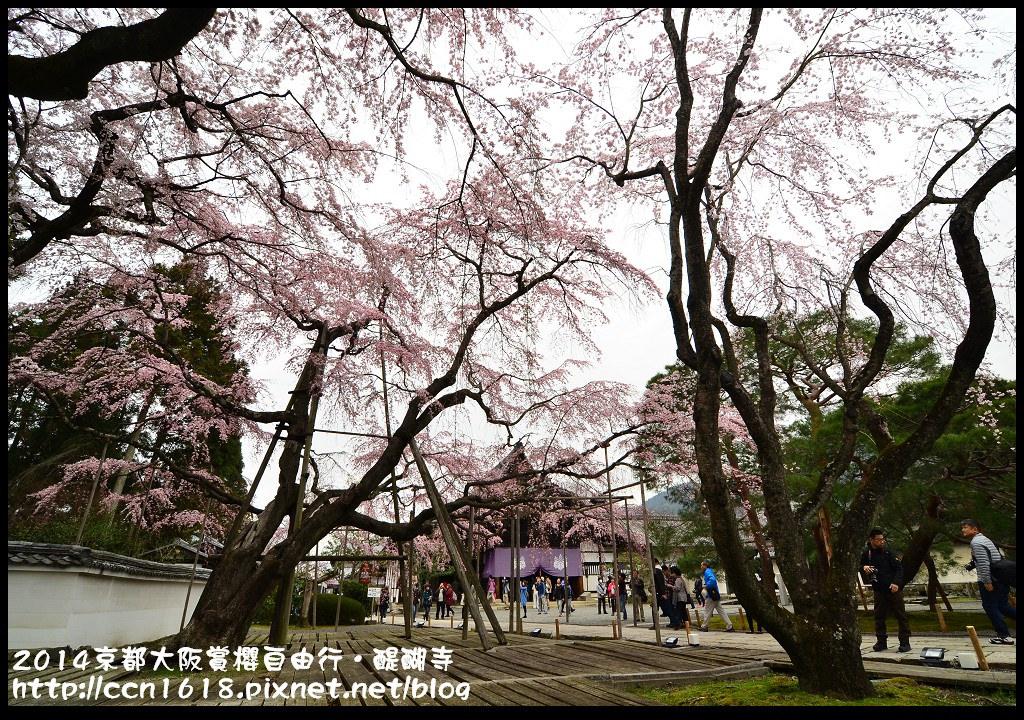 2014京都大阪賞櫻自由行.醍醐寺DSC_0010