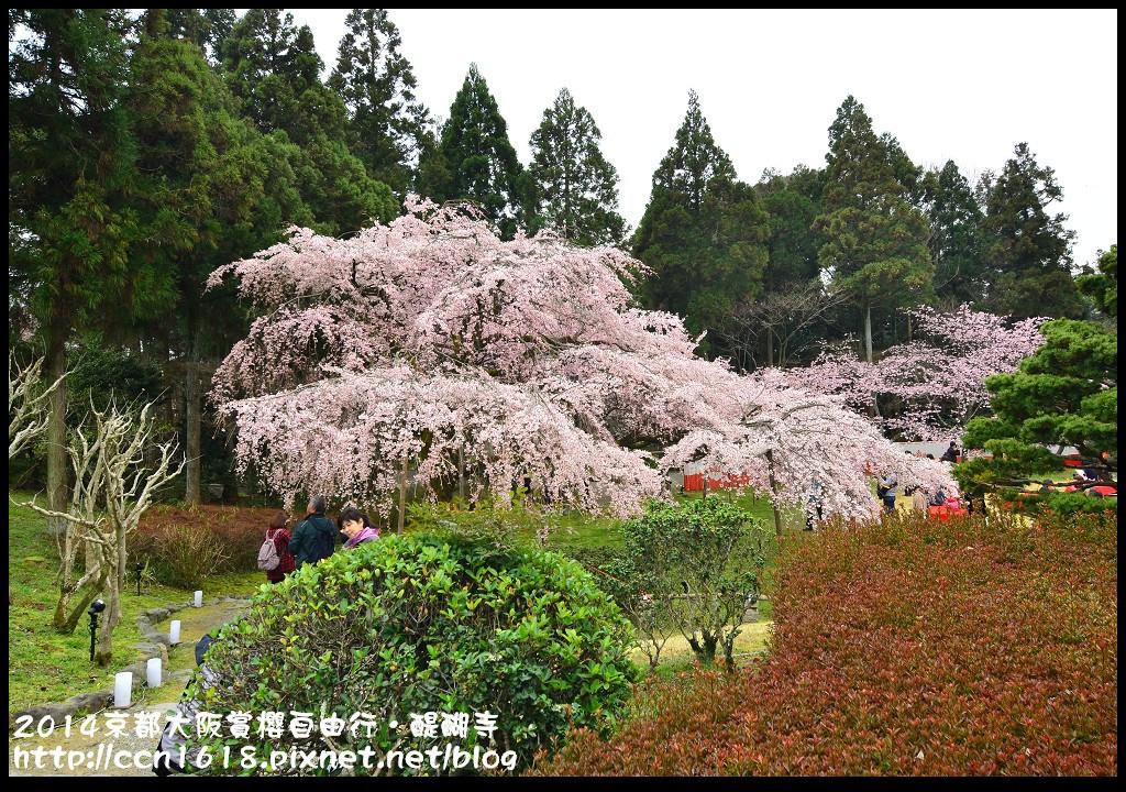 2014京都大阪賞櫻自由行.醍醐寺DSC_0028