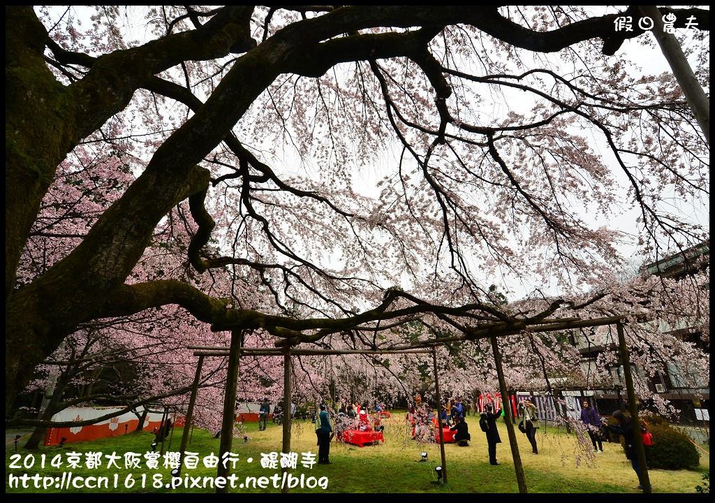 2014京都大阪賞櫻自由行.醍醐寺DSC_0034