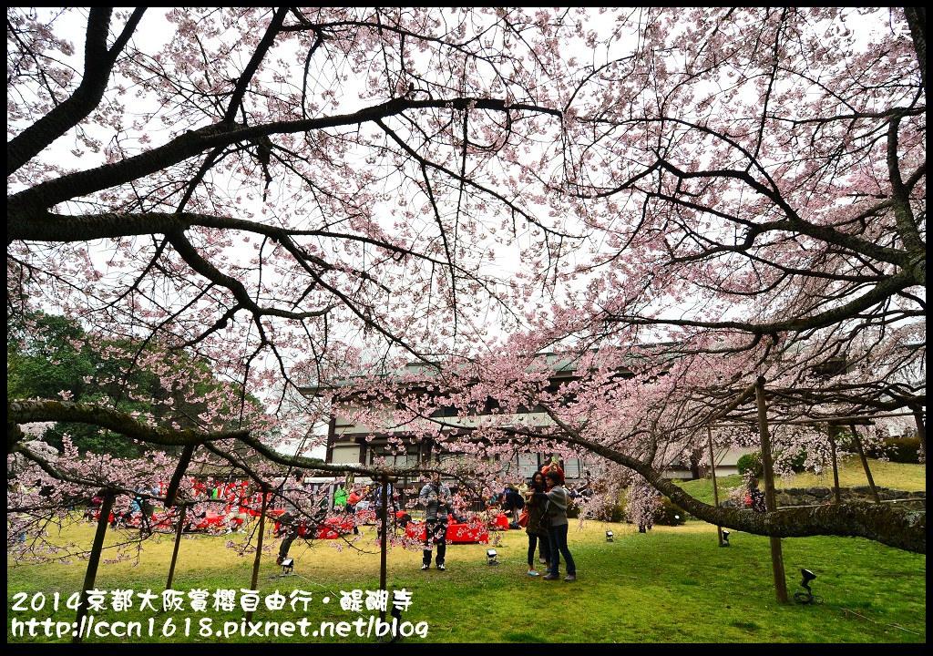 2014京都大阪賞櫻自由行.醍醐寺DSC_0038