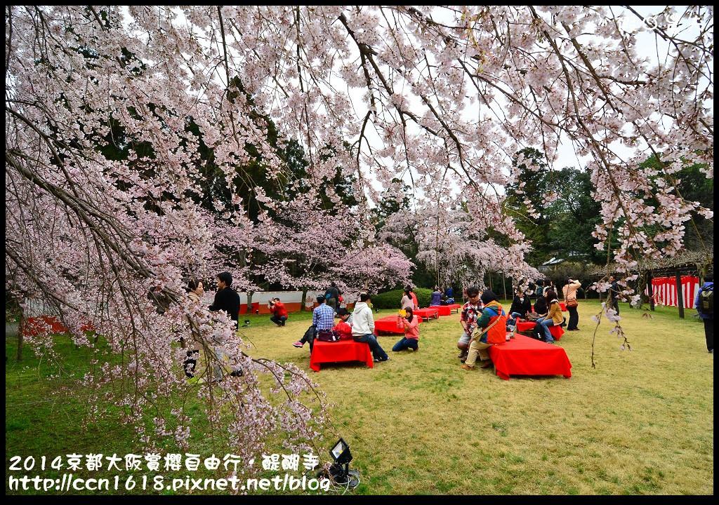 2014京都大阪賞櫻自由行.醍醐寺DSC_0065