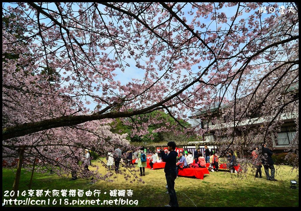2014京都大阪賞櫻自由行.醍醐寺DSC_0137